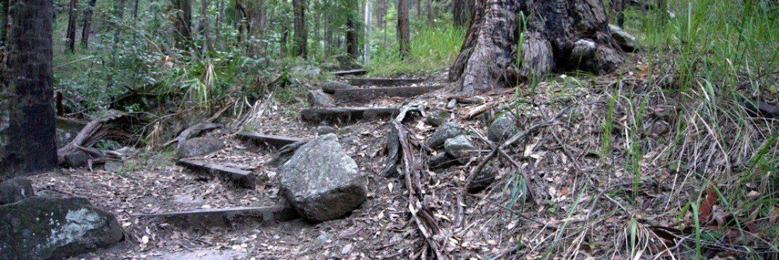 Mickey Creek Gorge